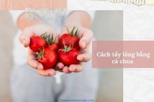 Cách tẩy lông bằng cà chua có hiệu quả không? Review cách triệt an toàn hiệu quả