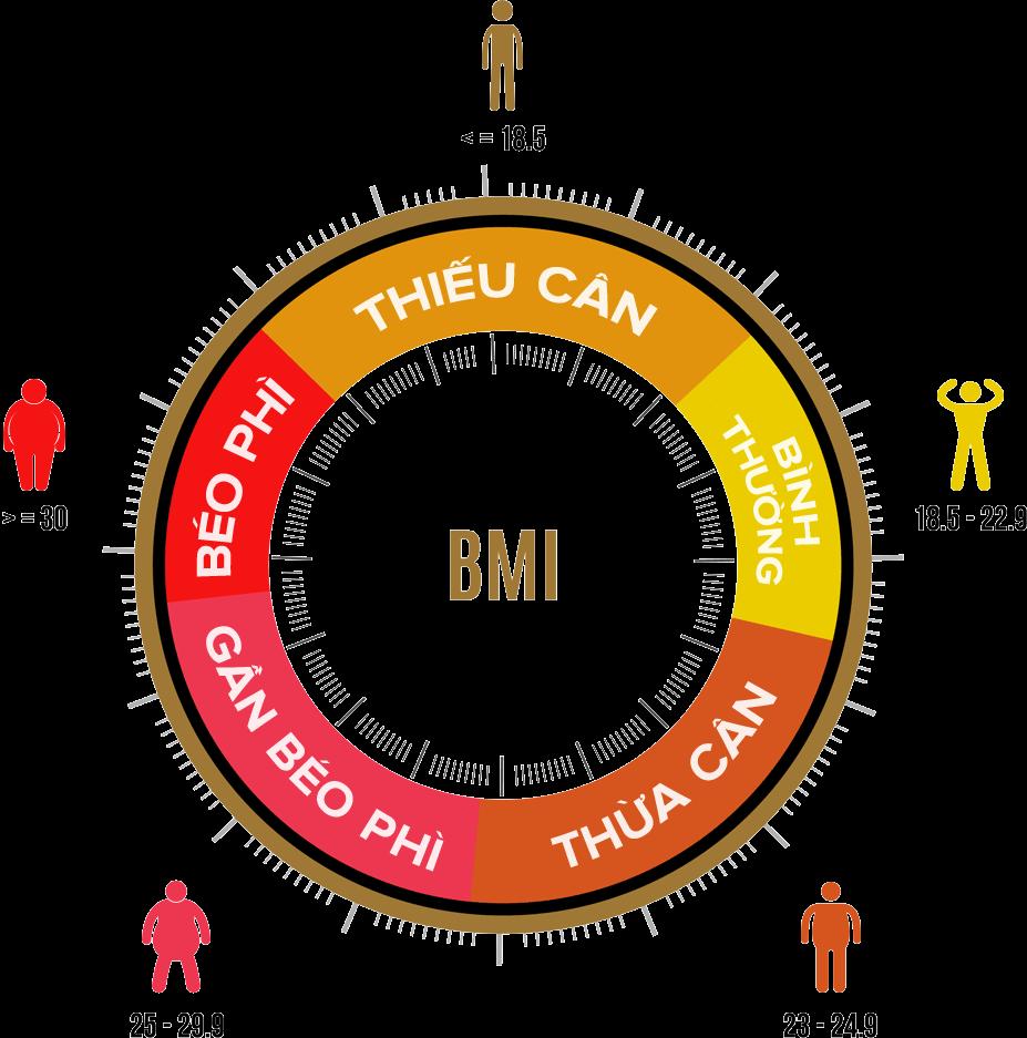 tìm hiểu cách nhận biết phòng chống, em biết gì về thừa cân béo phì là gì, gây hậu quả gì, ở việt nam