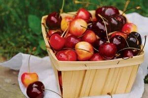 Ăn cherry có giảm cân không | Giảm cân bằng cherry như thế nào?