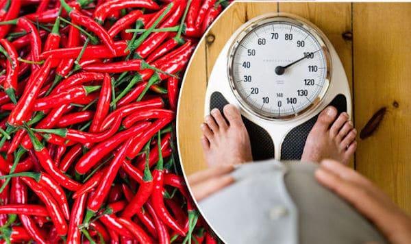 ăn ớt có giảm cân không, ăn ớt để giảm cân, ăn ớt giảm béo, ăn ớt giảm cân, ăn ớt nhiều giảm cân, giảm cân bằng ớt, giảm cân từ ớt, giảm cân với ớt, ớt có giảm béo không, ớt có giảm cân, ớt có giảm cân không, ớt có tác dụng giảm cân không, ớt làm giảm cân, ớt xanh giảm cân, quả ớt giảm cân, tác dụng của ớt giảm cân, uống nước ớt giảm cân, giảm cân có nên ăn cay, ăn cay có giảm cân, ăn cay có giảm cân không, ăn cay giúp giảm cân, ăn cay có giúp giảm cân không, ăn đồ cay giảm cân, ăn ớt như thế nào để giảm cân, ăn cay có béo không, ớt bao nhiêu calo, ăn cay giảm cân, ăn cay có giảm cân ko, ăn cay có mập không, ăn đồ cay có béo không, ăn đồ cay có giảm cân không