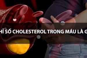 Chỉ số Cholesterol trong máu là gì? Làm thế nào để kiểm soát lượng Cholesterol trong cơ thể?