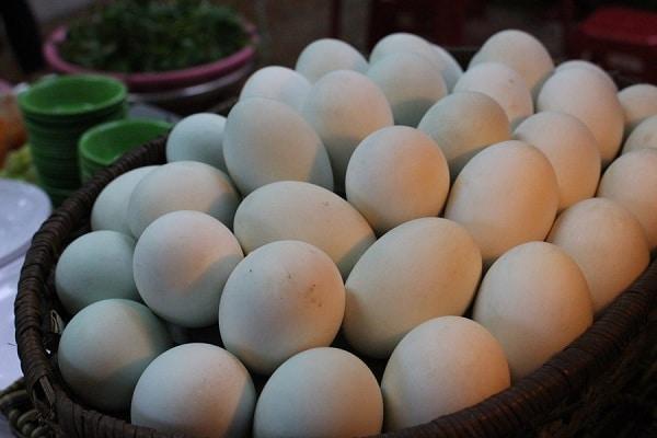 ăn hột vịt lộn có tăng cân không, ăn trứng vịt lộn có tăng cân không, ăn hột vịt lộn nhiều có tăng cân không, ăn trứng vịt lộn nhiều có tăng cân không, ăn trứng vịt lộn có bị tăng cân không, ăn trứng vịt lộn thai nhi có tăng cân không, ăn trứng vịt lộn giảm cân không, ăn trứng vịt lộn có giảm cân không, 1 quả trứng vịt lộn bao nhiêu calo, một quả trứng vịt lộn bao nhiêu calo, 1 quả trứng vịt lộn chứa bao nhiêu calo, 1 quả trứng vịt lộn có bao nhiêu calo, một quả trứng vịt lộn chứa bao nhiêu calo, một quả trứng vịt lộn có bao nhiêu calo, 1 quả trứng lộn bao nhiêu calo, ăn trứng vịt lộn có béo không, ăn trứng vịt lộn có béo ko, trứng vịt lộn, ăn trứng vịt lộn có mập không, trứng vịt lộn có béo không, trứng vịt lộn bao nhiêu calo, ăn trứng lộn có mập k, ăn hột vịt lộn có mập không, ăn trứng vịt lộn tăng cân, ăn hột vịt lộn buổi tối có mập không, ăn vịt lộn có tăng cân không, cách ăn trứng vịt lộn để tăng cân, trứng vịt lộn có mập không, ăn trứng vịt lộn như thế nào để tăng cân, trứng vịt lộn tăng cân, ăn hột vịt lộn có béo không, trứng vịt lộn có tăng cân không, trứng vịt lộn calo, ăn trứng lộn có béo ko, hột vịt lộn, cách tăng cân bằng trứng vịt lộn, ăn trứng lộn có tăng cân không, ăn trứng vịt lộn có tăng cân ko, ăn trứng lộn có mập ko, ăn trứng vịt lộn đêm có béo không, ăn trứng vịt lộn con tăng cân nhanh, tăng cân bằng trứng vịt lộn, ăn trứng vịt có tăng cân không, ăn trứng vịt lộn để tăng cân, ăn trứng vịt lộn buổi tối có béo không, hột vịt lộn ăn có mập không, calo trong trứng vịt lộn, ăn trứng vịt lộn giảm cân, trung vit lon, 1 trứng vịt lộn bao nhiêu calo, trứng vịt lộn có giảm cân không, ăn trứng vịt có mập không, vịt lộn bao nhiêu calo, ăn trứng vịt có béo không, trứng lộn, ăn trứng vịt lộn có béo, hot vit lon bao nhieu calo, trứng vịt lộn bn calo, giảm cân có nên ăn trứng vịt lộn, hột vịt lộn bao nhiêu calo, một trứng hột vịt lộn bao nhiêu calo, calo của trứng vịt lộn, ăn hột vịt lộn tăng cân, trứng vịt lộn chứa bao nhiêu calo, trứng vịt lộn có bao nhiêu cal