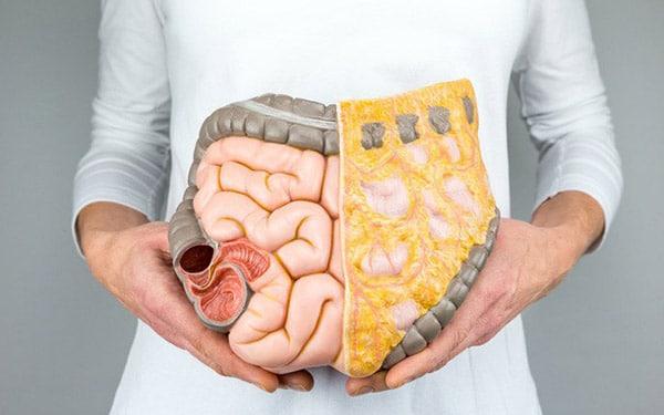 trà, viên thuốc uống, phương pháp chế độ ăn uống gì để, cách tập làm sao để giảm néo mỡ nội tạng hiệu quả bằng cách như thế nào an toàn
