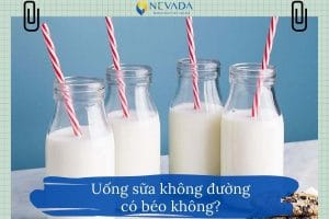 Uống sữa không đường có béo không? Bất ngờ  từ câu trả lời từ chuyên gia giảm béo