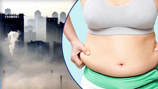 Người béo phì thải ra 700 triệu tấn khí thải mỗi năm trên toàn cầu | Một trong những nguyên nhân dẫn đến biến đổi khí hậu