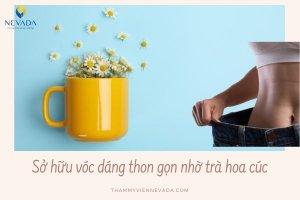 Uống trà hoa cúc có giảm cân không? Cách uống trà hoa cúc giảm cân bạn nên thử ngay