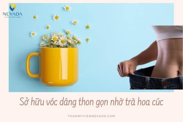 trà hoa cúc có giảm cân không, uống trà hoa cúc có giảm cân không, trà hoa cúc giảm cân, cách uống trà hoa cúc giảm cân, cách làm trà hoa cúc giảm cân, uống trà hoa cúc giảm cân, giảm cân bằng trà hoa cúc, Cách uống trà hoa cúc để giảm cân