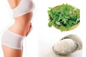 Chia sẻ 4 cách giảm mỡ bụng bằng lá ngải cứu và muối cho phái đẹp
