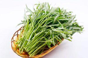 rau muống luộc bao nhiêu calo, 100g rau muống bao nhiêu calo, rau muống chứa bao nhiêu calo, 100gr rau muống bao nhiêu calo, 1kg rau muống bao nhiêu calo, 200g rau muống bao nhiêu calo, nộm rau muống bao nhiêu calo, trồng rau muống bao nhiêu calo, ăn rau muống bao nhiêu calo, 1 bó rau muống bao nhiêu calo, 1 mớ rau muống bao nhiêu calo, 1 tô canh rau muống bao nhiêu calo, 1 đĩa rau muống luộc bao nhiêu calo, calo rau muống, calo của rau muống, rau muống calo, calo trong rau muống, rau muống xào thịt bò bao nhiêu calo, 1 bát rau muống luộc bao nhiêu calo, rau muống luộc có bao nhiêu calo, rau muống xào có bao nhiêu calo, rau muống xào chứa bao nhiêu calo, canh chua rau muống bao nhiêu calo, rau muống luộc chứa bao nhiêu calo, 100g rau muống chứa bao nhiêu calo, rau muống xào tỏi chứa bao nhiêu calo, một đĩa rau muống bao nhiêu calo, 1 đĩa rau muống xào tỏi bao nhiêu calo, 1 mớ rau muống luộc bao nhiêu calo, 100 gram rau muống bao nhiêu calo, hàm lượng calo trong rau muống, 100g rau muống luộc bao nhiêu calo, ốc móng tay xào rau muống bao nhiêu calo, rau muống xào tỏi bao nhiêu calo, rau muống xào tỏi có bao nhiêu calo, 100g rau muống xào bao nhiêu calo, calo trong 100g rau muống, ăn rau muống có giảm cân không, ăn rau muống có mập, ăn rau muống giảm cân không, ăn rau muống có giảm béo không, ăn rau muống luộc giảm cân, ăn rau muống có giảm cân được không, ăn rau muống luộc có giảm cân không, ăn rau muống có tốt không, rau muống ăn có tác dụng gì, rau muống bổ sung chất gì, rau muống có độc không, ai ko nên ăn rau muống, có bầu ăn rau muống được không, có thai ăn rau muống tốt không, có bầu ăn rau muống, có nên ăn rau muống khi mang thai, có nên ăn rau muống khi bị mụn, có bầu ăn rau muống tốt không, bầu có ăn rau muống không, có được ăn rau muống khi mang thai, bầu ăn rau muống được không, trẻ em ăn rau muống có tốt không, dinh dưỡng từ rau muống, tại sao không ăn rau muống lại bị sẹo lồi