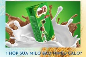 1 hộp sữa Milo bao nhiêu calo? Uống sữa Milo có giảm cân không?