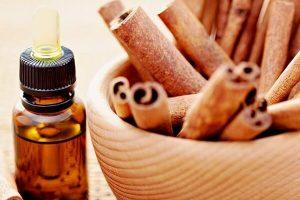 Cách sử dụng tinh dầu quế giảm mỡ bụng có hiệu quả không?