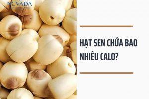 Hạt sen chứa bao nhiêu calo? Ăn hạt sen có béo không? Tiết lộ cực bất ngờ về lượng calo của những món ngon cùng hạt sen