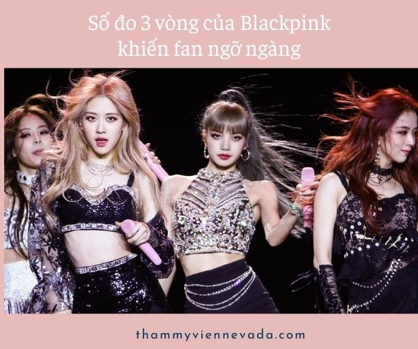 số đo 3 vòng của blackpink, số đo vòng eo của blackpink, số đo 3 vòng của jennie blackpink, số đo ba vòng của blackpink, số đo vòng 1 của blackpink, số đo 3 vòng blackpink, vòng eo của rose blackpink là bao nhiêu, số đo của blackpink, chế độ ăn kiêng của blackpink, số đo của lisa blackpink, số đo 3 vòng của lisa blackpink, lisa blackpink số đo 3 vòng, lisa blackpink số đo