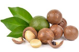 Ăn hạt macca có giảm cân không ? Hạt macca bao nhiêu calo? Lời giải đáp của các chuyên gia dinh dưỡng
