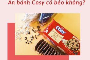1 cái bánh Cosy bao nhiêu calo? Ăn bánh Cosy có béo không? – Và đây là câu trả lời dành cho bạn