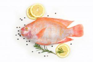 Ăn cá diêu hồng có mập không? 1 con cá diêu hồng bao nhiêu calo?