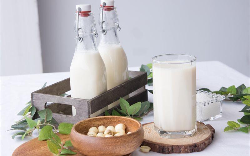 hạt macca có giảm cân, ăn hạt mắc ca giảm cân, ăn hạt macca giảm cân, hạt mắc ca giảm cân, giảm cân bằng hạt macca, ăn hạt macca có giảm cân không