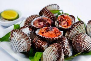 100g Sò bao nhiêu calo? Ăn sò có béo không? Cách ăn sò cho người giảm cân
