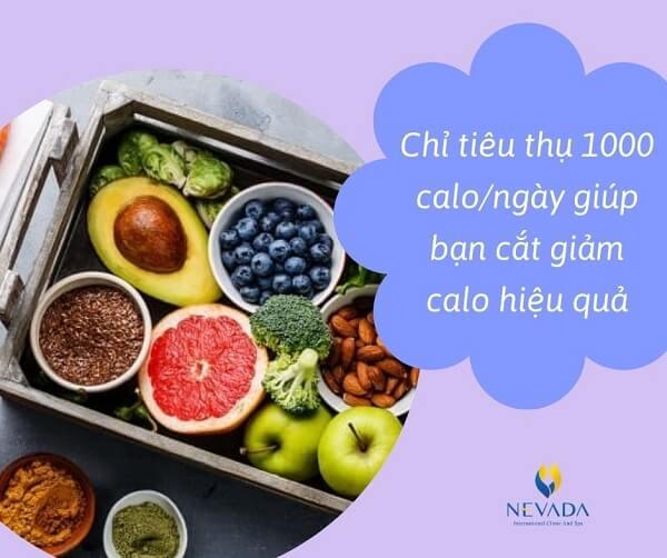 thực đơn 1000 calo mỗi ngày, thực đơn 1000 calo, bữa ăn 1000 calo, thực đơn giảm cân 1000 calo, giảm 1000 calo mỗi ngày, cách giảm 1000 calo mỗi ngày, chế độ ăn 1000 calo
