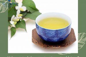 Uống trà diếp cá có giảm cân không? – Tiết lộ  từ chuyên gia không phải ai cũng biết