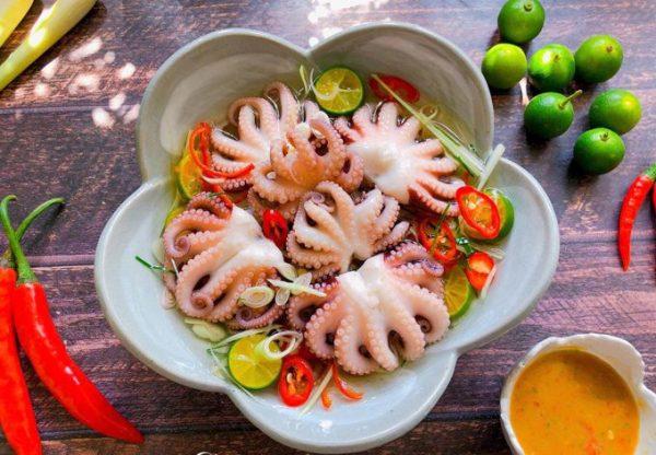 100g bạch tuộc bao nhiêu calo, bạch tuộc bao nhiêu calo, calo trong bạch tuộc, ăn bạch tuộc có béo không, ăn bạch tuộc có mập không, Bánh bạch tuộc Takoyaki bao nhiêu calo, Bạch tuộc xào bao nhiêu calo, Bạch tuộc nướng bao nhiêu calo
