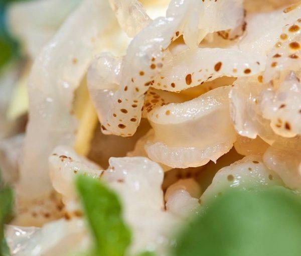 ăn sứa có béo không, sứa bao nhiêu calo, nộm sứa bao nhiêu calo, ăn nộm sứa có béo không, sứa biển bao nhiêu calo, sứa có bao nhiêu calo, Ăn sứa giảm cân, Calo trong sứa biển