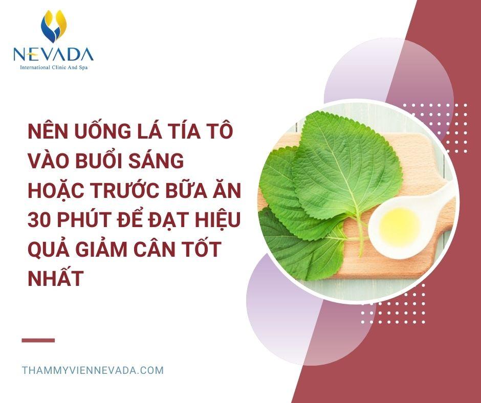 giảm cân bằng lá tía tô, uống nước lá tía tô có giảm cân không, cách giảm cân bằng lá tía tô, cách giảm cân từ tía tô, giảm cân với lá tía tô, cách dùng lá tía tô giảm cân, tía tô giảm cân