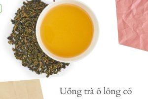 Trà ô long bao nhiêu calo? Uống trà ô long có giảm cân không? Hé lộ bí quyết giảm 3 – 5kg mỡ thừa bằng cách uống trà ô long giảm cân