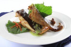 Ăn cá đuối có mập không? Người giảm cân có ăn cá đuối có được không?