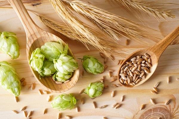 lúa mạch giảm cân của nhật, cách ăn lúa mạch giảm cân, cháo lúa mạch giảm cân, trà lúa mạch giảm cân, bánh mì lúa mạch giảm cân, uống lúa mạch giảm cân, bột lúa mạch giảm cân, ăn lúa mạch có giảm cân không, lúa mạch ăn kiêng