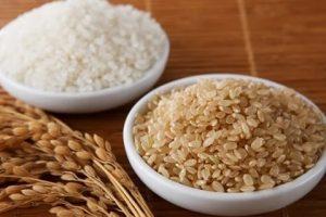 Ăn gạo lứt trắng có giảm cân không? Gạo lứt trắng khác gạo lứt đỏ như thế nào?