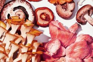 Những thực phẩm giúp làm giảm mỡ bụng siêu tốc: Chị em THẾ GIỚI công nhận!